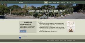 New SCCSS website